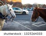 saint petersburg  russia ... | Shutterstock . vector #1325264333