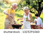 family having a barbecue in a...   Shutterstock . vector #1325291060