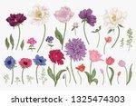 set with spring flowers. garden ...   Shutterstock .eps vector #1325474303