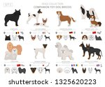 companion and miniature toy... | Shutterstock .eps vector #1325620223