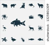 zoo icons set with raccoon ... | Shutterstock .eps vector #1325801309