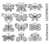 Twelve Hand Drawn Butterflies...