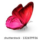 Stock photo red pink butterfly isolated on white 132659936