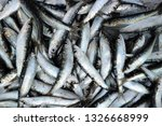 freshly caught sardines at fish ... | Shutterstock . vector #1326668999