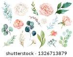 Watercolour Floral Illustratio...