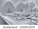 horizontal shot of a beautiful... | Shutterstock . vector #1326913319