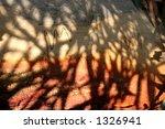 Tree Shadow Abstract  2