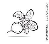 beet icon illustration isolated ... | Shutterstock .eps vector #1327246100