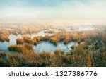 winter foggy marshland  | Shutterstock . vector #1327386776