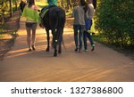young women with hes horse in... | Shutterstock . vector #1327386800