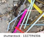 Small photo of Colorful unsightly non-biodegradable plastic drinking straws as trash / litter mixed with seaweed and sea shells on beautiful pristine sandy beach in United States endangering marine life