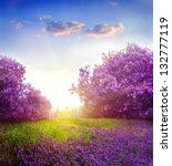 spring landscape | Shutterstock . vector #132777119