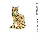 fahion bengal cat girl in ... | Shutterstock .eps vector #1327906019