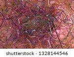 virtual backdrop  messy strings ... | Shutterstock . vector #1328144546
