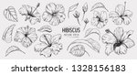 hibiscus flower. set of hand... | Shutterstock .eps vector #1328156183