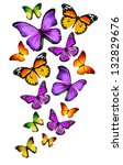 Stock photo many different butterflies isolated on white background 132829676