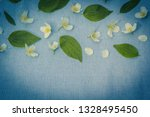 romantic floral backgorund | Shutterstock . vector #1328495450