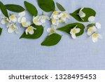 romantic floral backgorund | Shutterstock . vector #1328495453