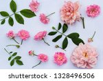 pink roses on white background | Shutterstock . vector #1328496506