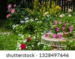 beautiful  home garden with... | Shutterstock . vector #1328497646
