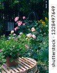 beautiful  home garden with... | Shutterstock . vector #1328497649