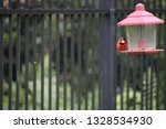 red male northern cardinal... | Shutterstock . vector #1328534930