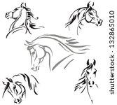 Stock vector horse s head studies studies of horse s heads based on brush drawings 132865010