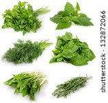 collection of fresh herbs... | Shutterstock . vector #132872066