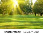 green lawn with trees in park... | Shutterstock . vector #132874250