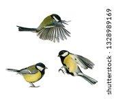 three small songbirds tit fly... | Shutterstock . vector #1328989169