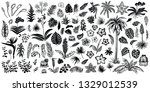 tropical plant silhouette.... | Shutterstock .eps vector #1329012539