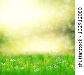spring  summer background with... | Shutterstock . vector #132912080