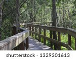 boardwalk preserve florida | Shutterstock . vector #1329301613