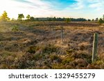 creative landscape photograph...   Shutterstock . vector #1329455279