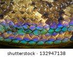 ������, ������: Rainbow snake skin Malagasy