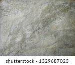cement texture in the...   Shutterstock . vector #1329687023