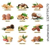 set of different delicious... | Shutterstock . vector #1329759170