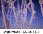 morning frost painted birch... | Shutterstock . vector #1329816110