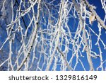 morning frost painted birch... | Shutterstock . vector #1329816149