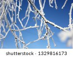 morning frost painted birch... | Shutterstock . vector #1329816173