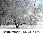 morning frost painted birch... | Shutterstock . vector #1329816176