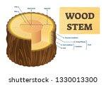 wood stem vector illustration.... | Shutterstock .eps vector #1330013300