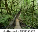 footpath with staircase in a... | Shutterstock . vector #1330056539