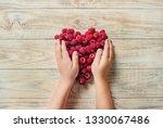 raspberries are in the hands of ... | Shutterstock . vector #1330067486
