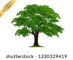 tree  isolated on white... | Shutterstock .eps vector #1330329419