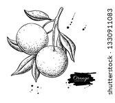 orange branch vector drawing.... | Shutterstock .eps vector #1330911083