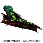 vector illustration of iguana.... | Shutterstock .eps vector #1330996280