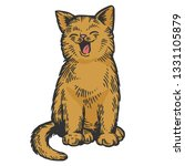 yawning cat color sketch...   Shutterstock .eps vector #1331105879