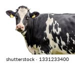 cow on a white background | Shutterstock . vector #1331233400