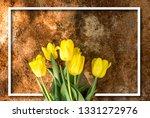 woman hands tilling the soil ... | Shutterstock . vector #1331272976